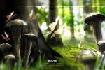 Avatar & Zephyr :: Иллюстратор Kovad